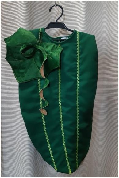 Agurkėlio kostiumas 2