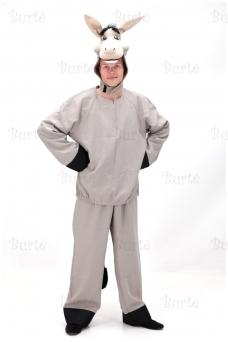 Asilo kostiumas