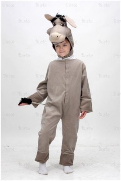 Asiliuko kostiumas