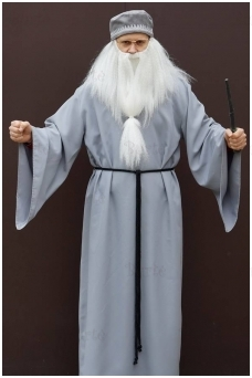 Dumbldoro kostiumas