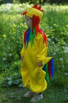 Gaidelio kostiumas