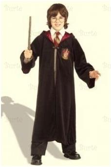 Hario Poterio kostiumas