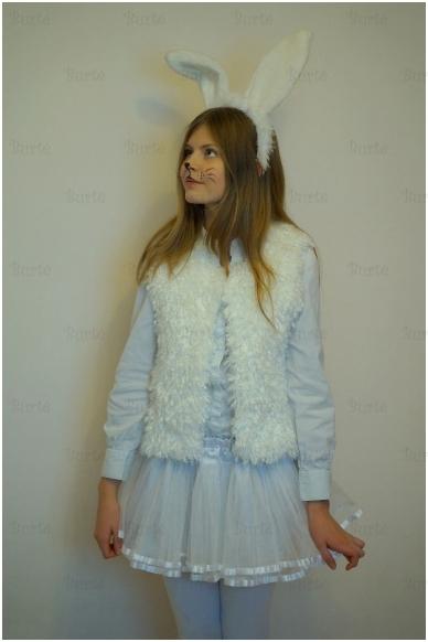 Kiškutės kostiumas 2