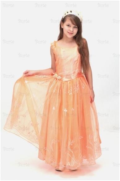 Princesės kostiumas 2