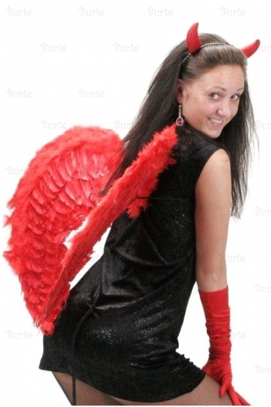 Raudoni sparnai