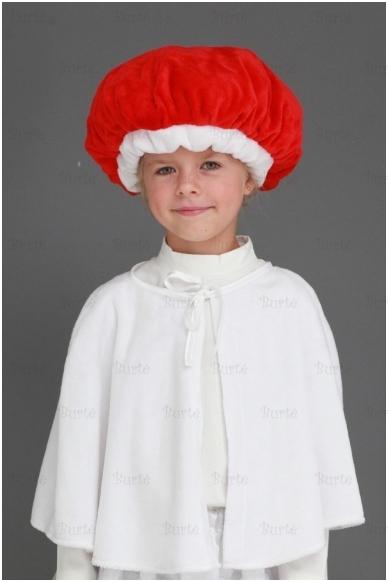 Raudonikio - ūmedės kostiumas