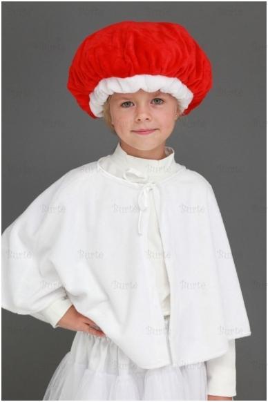 Raudonikio - ūmedės kostiumas 2