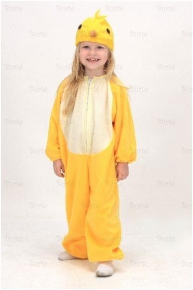 Viščiuko kostiumas