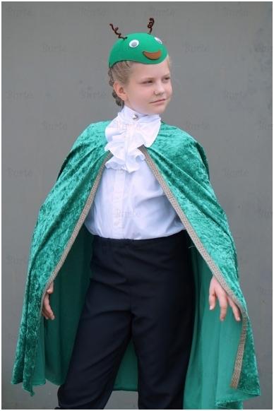 Žiogo kostiumas