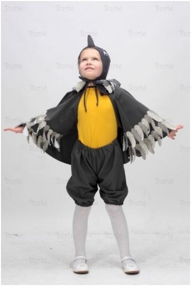 Zylutės kostiumas